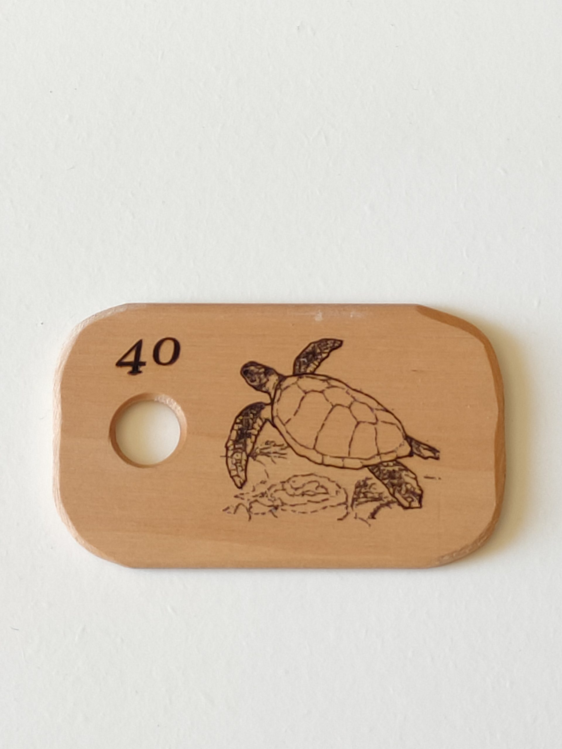 40 – Tortue